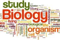 √Pengertian Biologi dan Tingkat Objek Yang Dipelajari