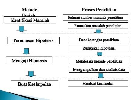 Tahapan Metode Penelitian Biologi Lengkap Dosenpintar Com