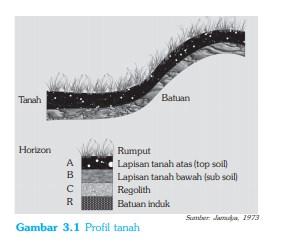 √ Lapisan-lapisan Tanah : Pengertian, Tekstur, Permeabilitas dan Solum